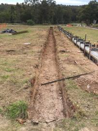 Augu kaevamine